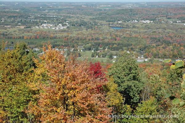 rib mountain wausau wi fall autumn color leaves