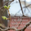 spring weather quote mark twain