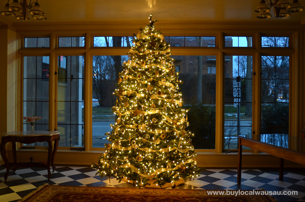 MCHS-Woodson-House-tree-1